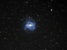 M83 Southern Pinwheel - Rhondda